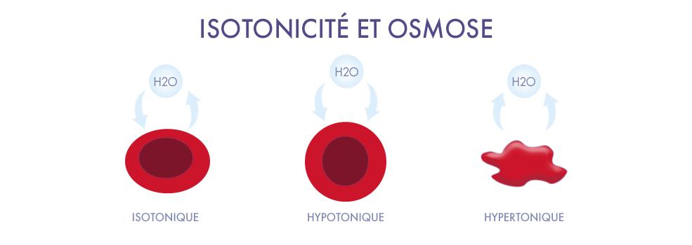 Schema osmose isotonicité Jonzac